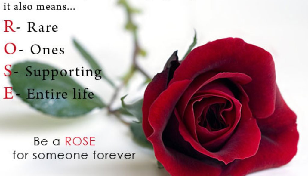Best Lines on Happy Rose Day 2018 to My girlfriend Love Wife Crush Lady