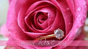 Happy Rose Day Special Flowers Images HD Wallpaper Pic Photos 2018