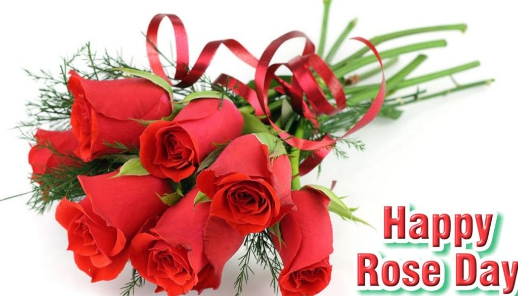 Valentines Day Rose Day Whatsapp FB Status for Single Breakup 2018