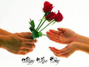 Happy Rose Day Instagram Hash Tags Facebook Hash Tags Trending 2018