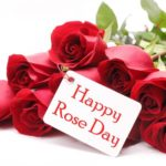 Happy Rose Day 2018 Whatsapp cards, Happy Rose Day 2018 Whatsapp dp, Happy Rose Day 2018 Whatsapp jokes, Happy Rose Day 2018 Whatsapp message, Happy Rose Day 2018 Whatsapp picture, Happy Rose Day 2018 Whatsapp profile photo, Happy Rose Day 2018 whatsapp sms, Happy Rose Day 2018 Whatsapp text, Happy Rose Day 2018 Whatsapp Video, Happy Rose Day 2018 Whatsapp status