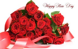 Happy Rose Day 2018 Facebook Live Insta Stories Tags Whatsapp Status